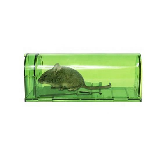 American Market Popular Mouse Cage Indoor and Outdoor Use Human Mouse Trap