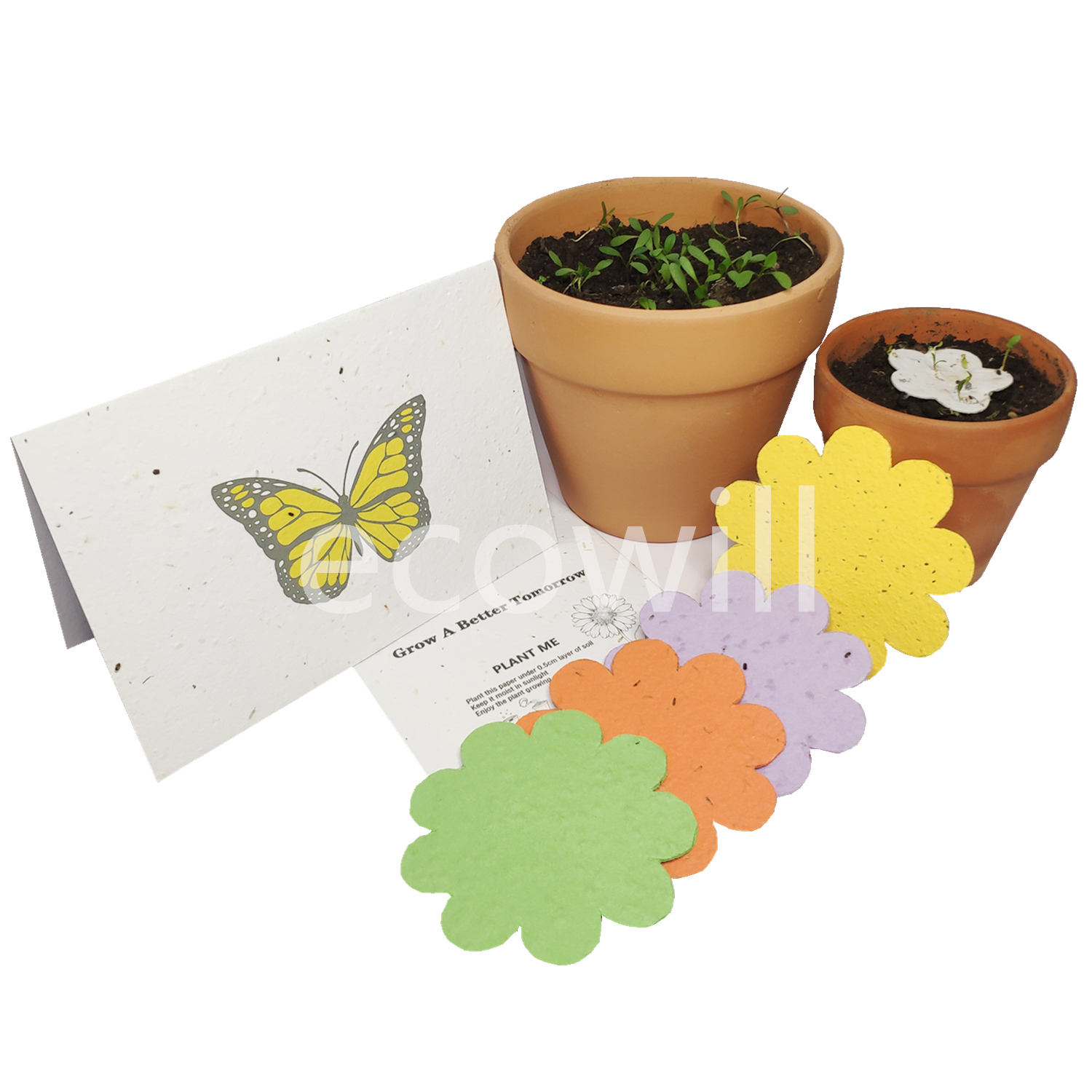 Butterfly Plantable Seed Paper Greeting Card with Botantical Verb Veggie Flower Seeds