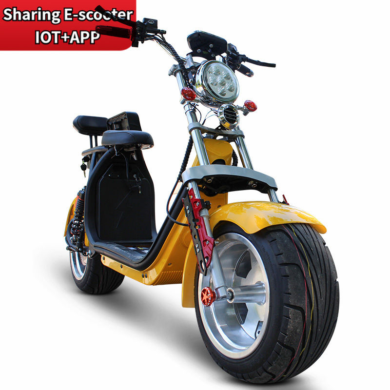 2020 New Promotional Various 2000W Citycoco Newest Design 18*9.5 Inch halei Durable Big Wheel Electric Scooter