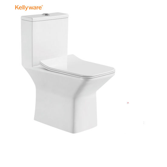 Sanitary Ware Toilet Arrow One Piece Sale Soft Cover Seat Ceramic toilet for Bathroom