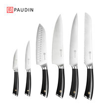 6 pcs Professional Stainless Kitchen Knife Set Plastic Handle Cutlery Set For Wholesale