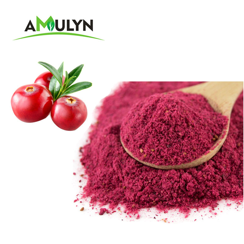 Cranberry fruit extract powder bulk for juice