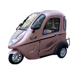 Closed Passenger Tricycle 3 Seat Electric Trike Moped Car With Plastic Cabin