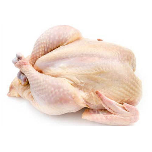 Halal Frozen Chicken Feet with Best Quality & Specifications for Sale Hilton Foods Pakistan