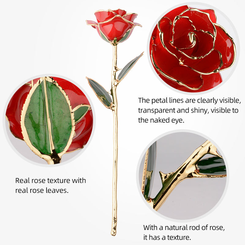 Amazon hot factory supply 24k gold plated natural rose Valentine's Day creative gift Festival Includes gift box and stand