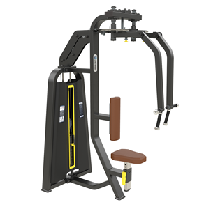 Shandong Lanbo gym equipment commercial rear delt pec fly body building machine New strength gym exercise fitness equipment