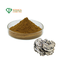 Best quality Anti Cancer Coriolus Versicolor extract polysaccharide powder