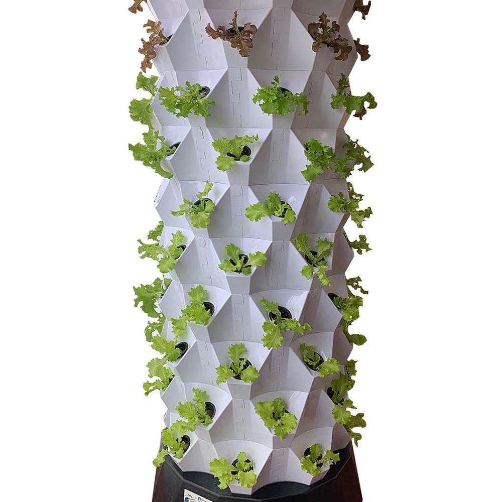 Skyplant Home Garden vertical Grow Kit Growing Systems complete hydroponic system smart home automation system