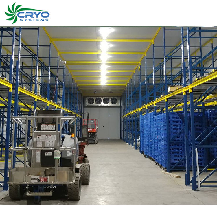 carrot oil freshwater crayfish cold storage for red chillies cold storage for tomato cold storage warehouse project report