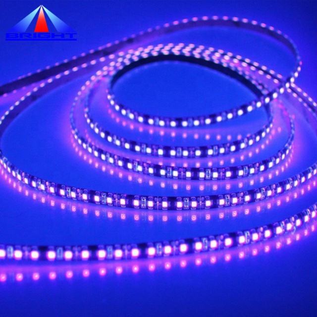 Purple UVA UVC Germicidal Purple Led Light Strip 254nm 360nm 365nm 455nm UV Led Stripes 2835 Smd Led Tape Strips Light