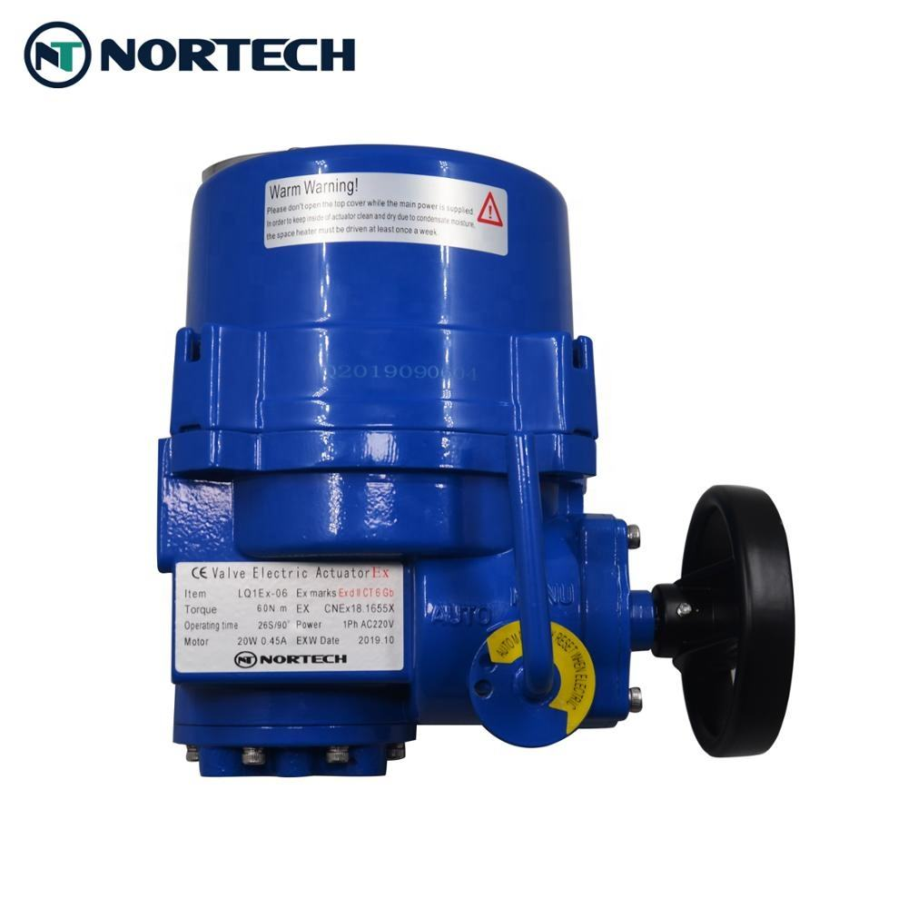 electric actuator for valves