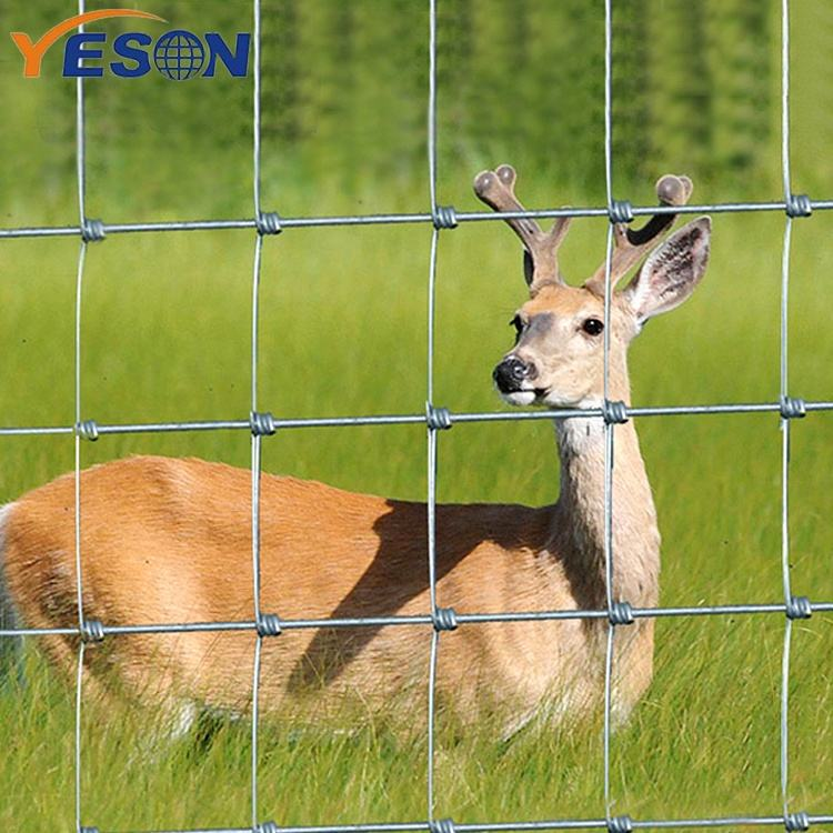 YESON knotted fence australia standard galvanized steel fixed knot deer fence