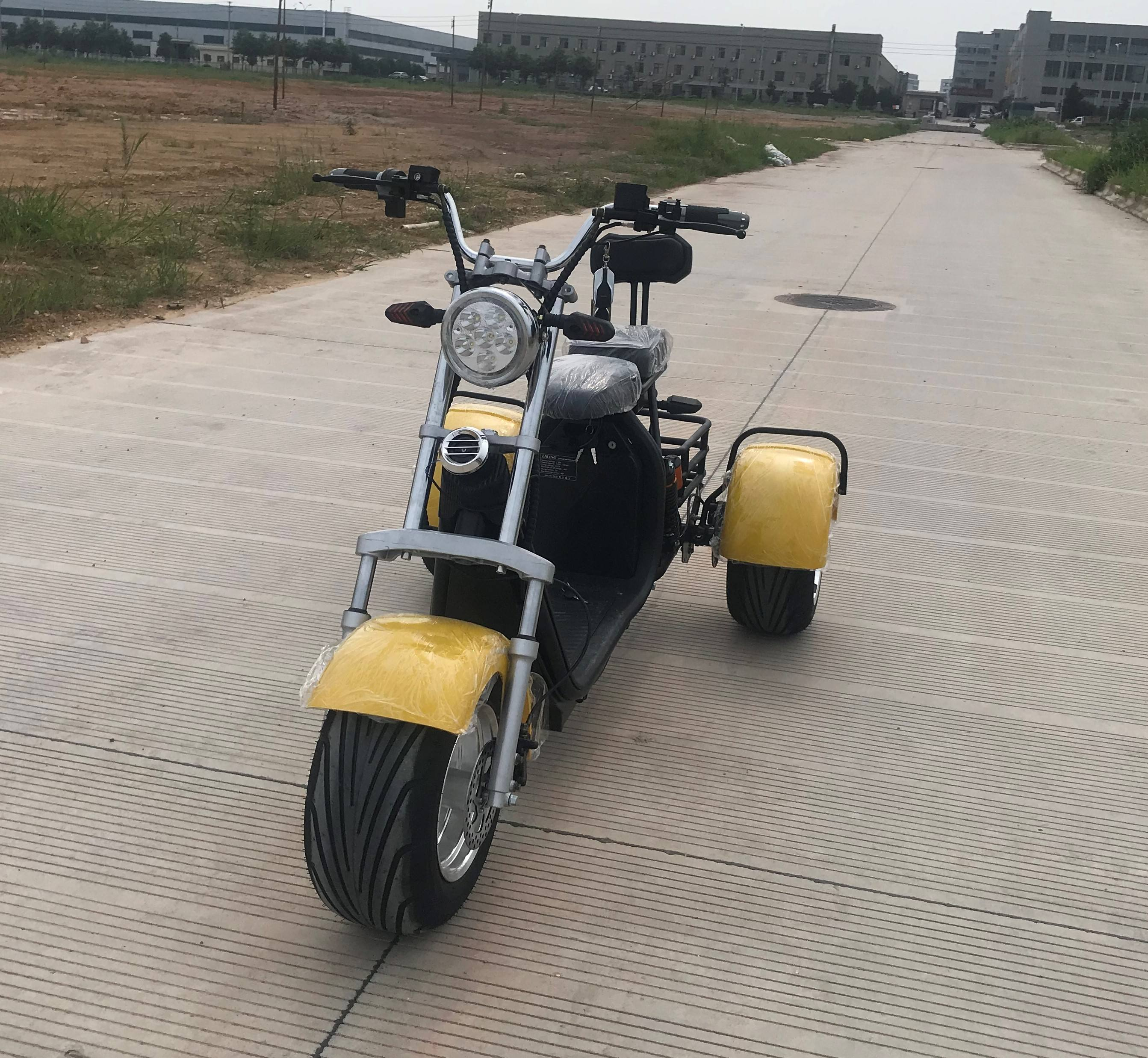 2019 New style CE electric scooter 1000w 3 wheel sport citycoco electric motorcycle seev citycoco