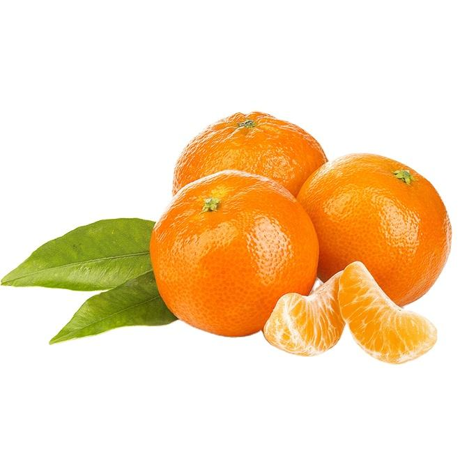 Top Quality Fresh Mandarin Orange Fruit For Bulk Quantities And Low Prices/Wholesale mandarin (Kinnow) From Sargodha Pakistan