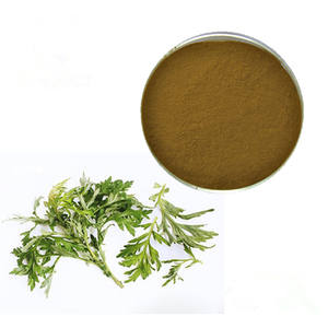 GreenHerb Supplyที่ดีที่สุดราคาArbor Wormwood Leaf Powder Artemisinin