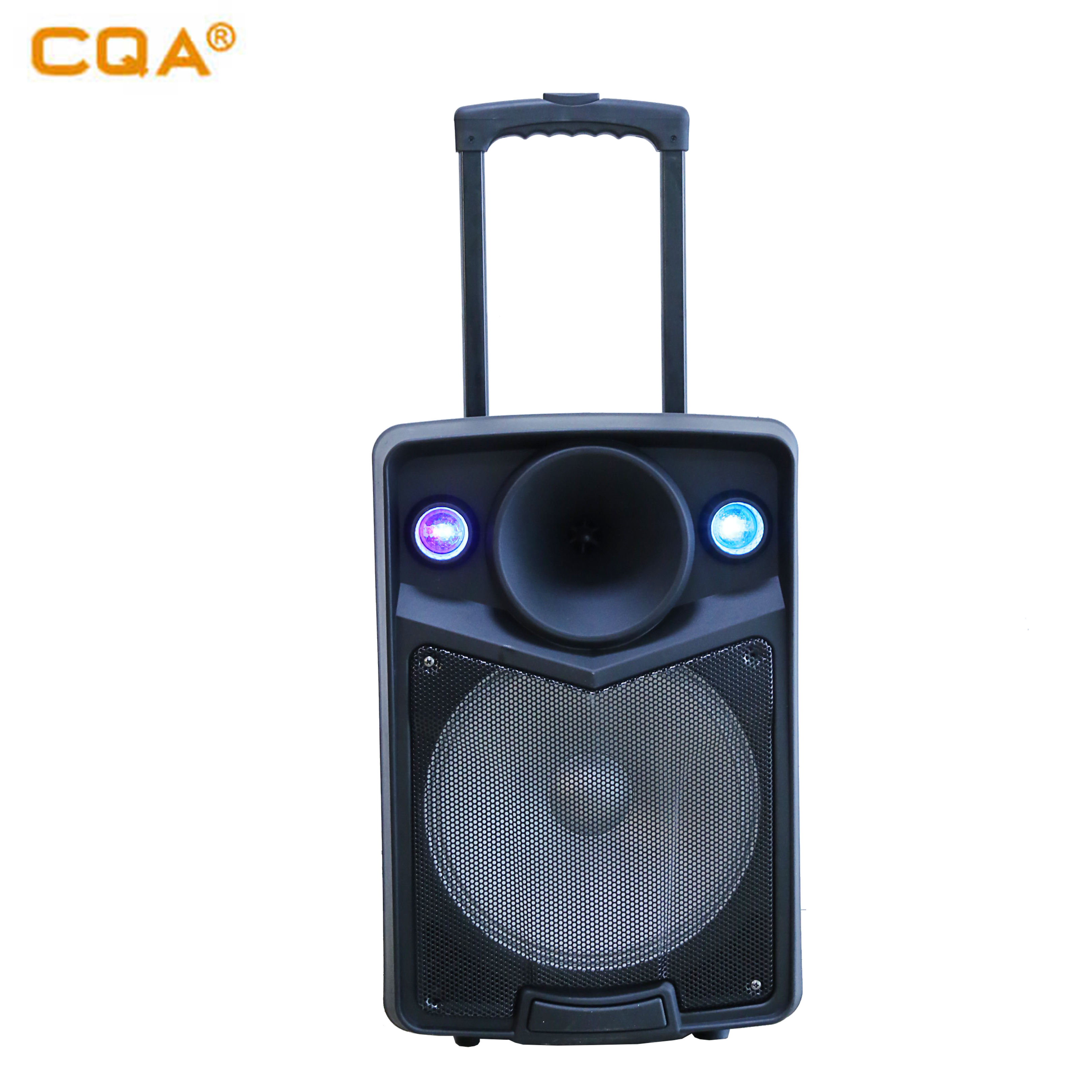 Loud Party Speaker Woofer Amplified Function with Professional Wireless Microphone