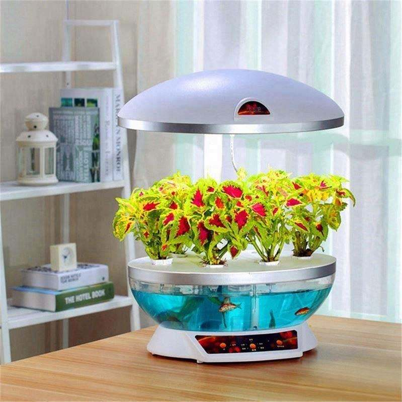 Automatic Balcony vegetables machine Ecological aquarium