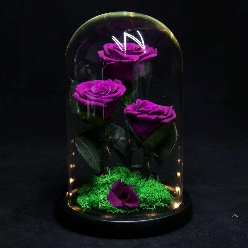 B-20 amazon top seller home decor flower preserved roses mother day glass dome gift set handmade decorative flowers rose