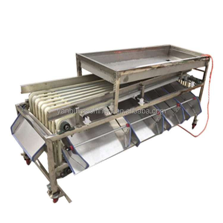 High Quality Industrial Fruit Waxing Sorting Citrus Grading Machine