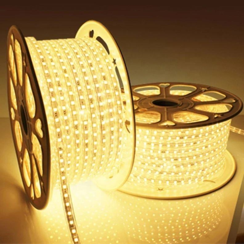 220v 110v Waterproof Ip65 2835 Led Strip Led Light Hose 6500k Led Light