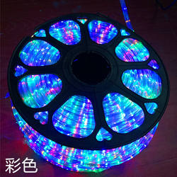 AC220V Flexible Led Strip Light Waterproof RGB Warm White Ro