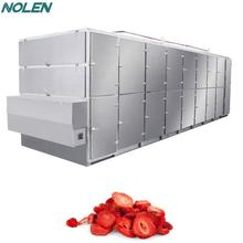 High Output Tunnel Mesh Belt Dryer Fruit Vegetable Dehydrator Drying Machine