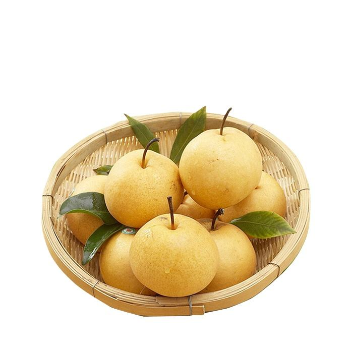 hot selling China fresh pear with good quality for export fresh pear