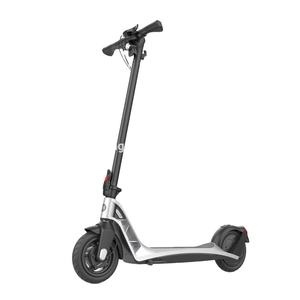 Lightweight E Skateboard Scooter with dual motor