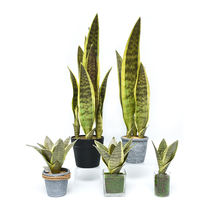 Factory Cheap Artificial Plants Leaves Indoor  Flower Leaf  Snake Plant For Home Decoration
