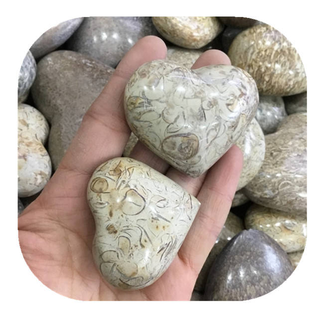 Wholesale natural Dinosaur Bone Fossil carved crystal heart shape stone for home decoration