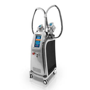 Professionnel 3D Cool Cryolipolysis Amincissant La Machine de Sculpture/Corps et Visage Machine De Cryolipolyse