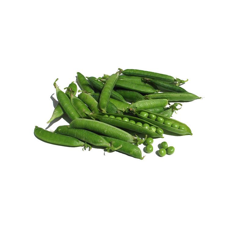 Green Peas with Good Price Natural Vegetable