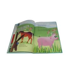 China professional english story hardcover book printing