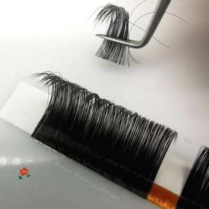Private volume lashes individual eyelash silk eyelash extensions
