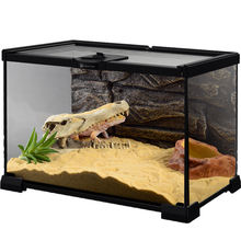 Reptile Glass Terrarium Cage for Frog Gecko Metal net of rain forest climbing pet cagefor Frog Gecko snake