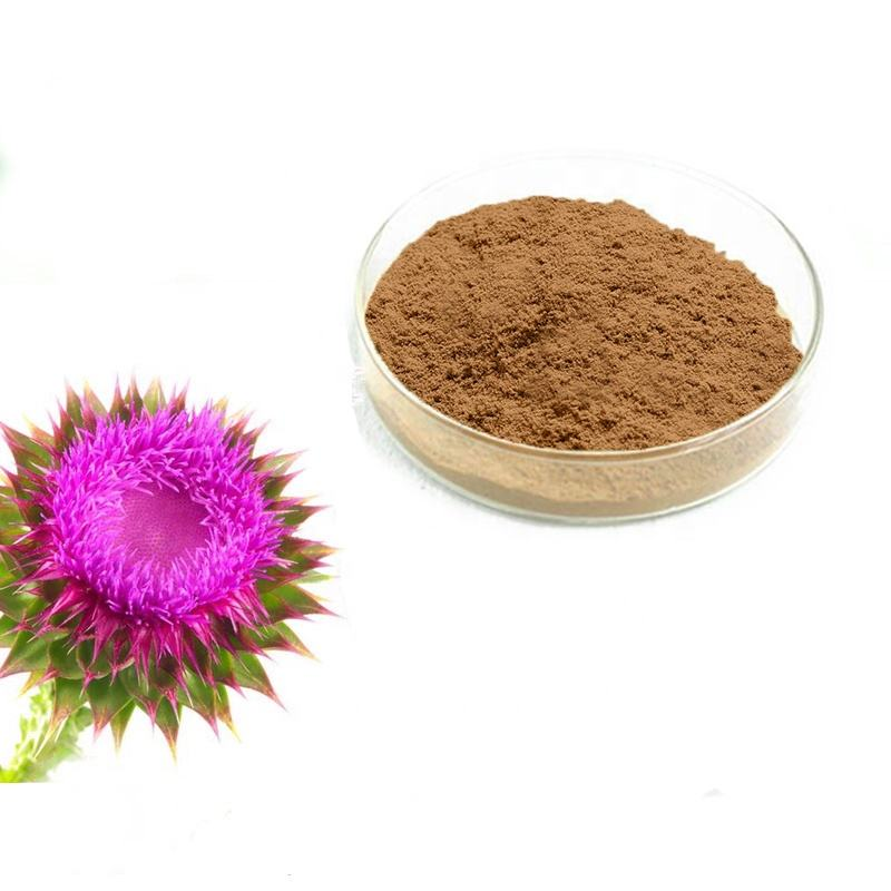 Cápsula Raw Material Natural Organic Milk Thistle Extrato Silymarin Extrato Em Pó