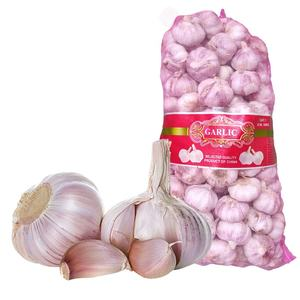 10kg mesh bag fresh garlic