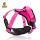 Wholesale Pet Product Supplies Dog Harness With Leash for dog