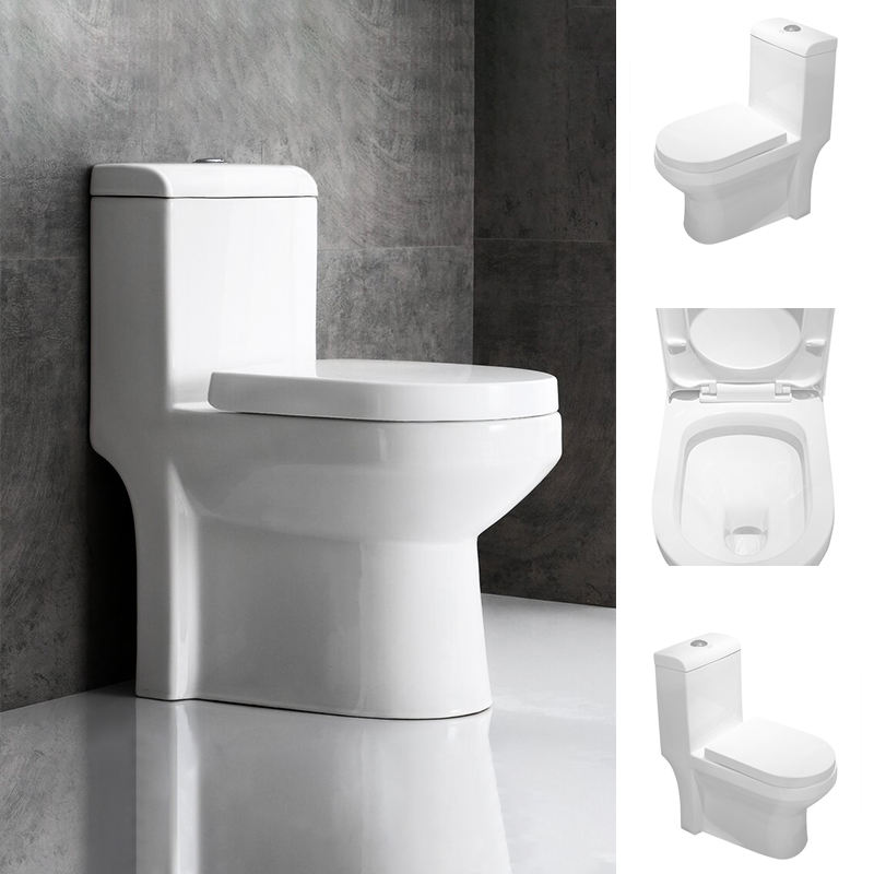Goodone Western Washdown Wc Ceramic Toilet Commode Single Piece