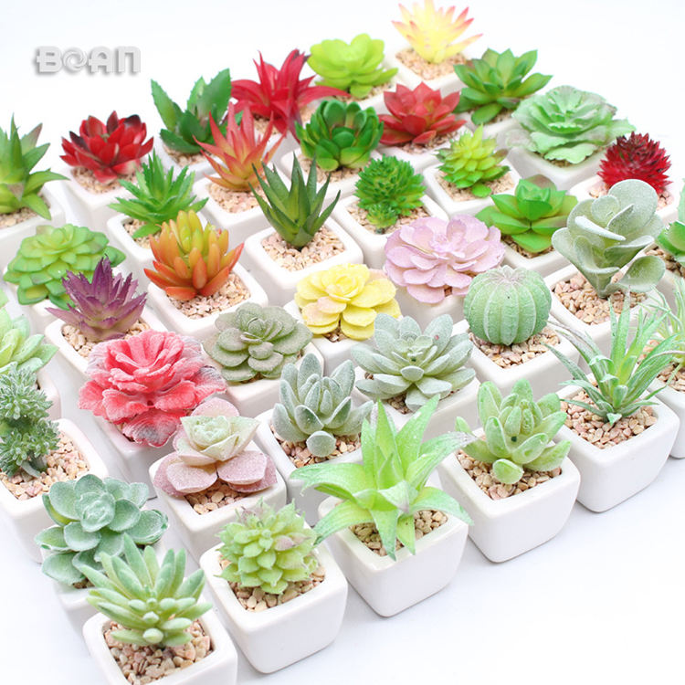 Indoor Succulent Wall Set Tabletop Artificial Succulent Plants Picks Cactus