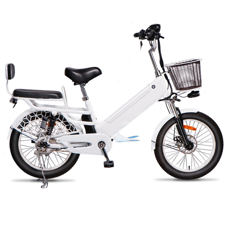20 inch Green city electric bike ebike reduce pollution
