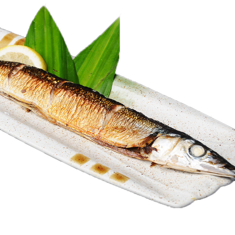 Huiyang Food Hot Sales High Protein seafood Frozen Roasted Saury Fish