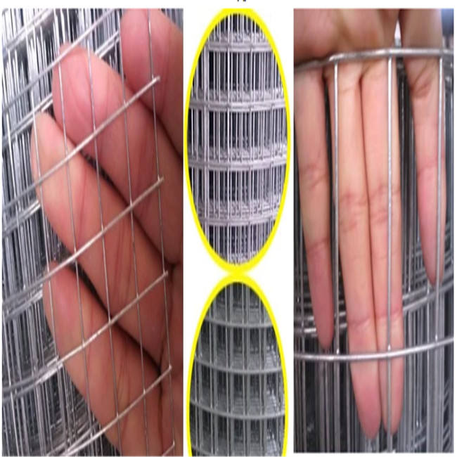 Garden Park Welded Wire Mesh Low Fencing Protection