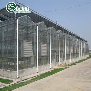 venlo Galvanized Steel Pipe Greenhouse with tower garden