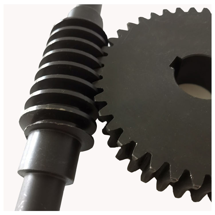 worm gear and worm shaft m2.5 worm wheel
