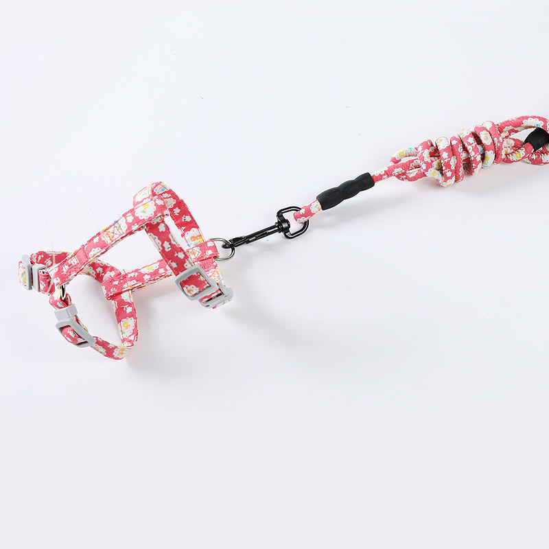 Wholesale Japanese Style Anti-lost Running Multi-color Leashes Cat Collar Pet Leash Set