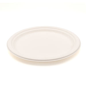 Top Quality Large Oval Plate biodegradable eco disposable solid color bagasse tableware