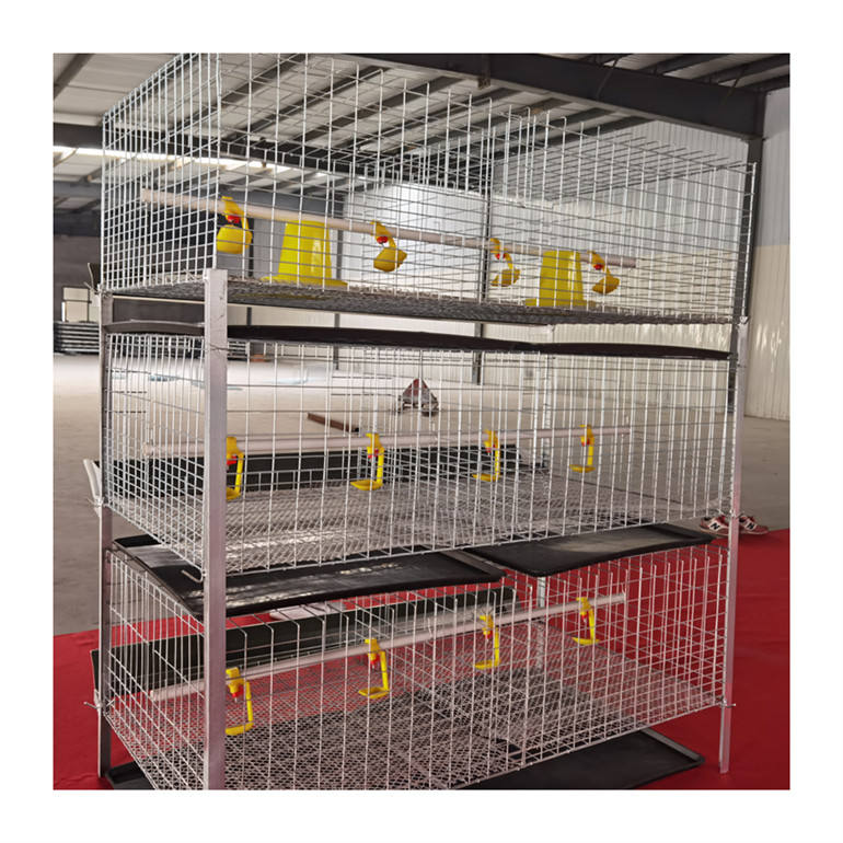 broiler chicken cage in arabic country poultry bottom cage manure trays H type