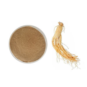 Pure Natural Panax Ginseng Root Extract Powder For Skin Care