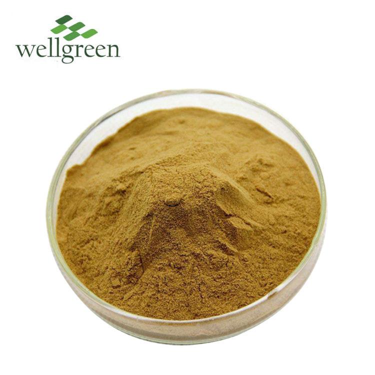 Wellgreen Natural puro de las 20:1 en polvo cáncer Bush Sutherlandia Frutescens EXTRACTO DE